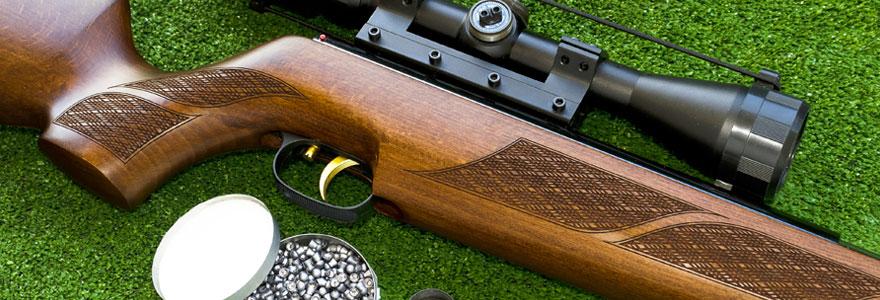 carabine à plomb